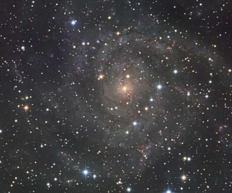 IC 342 from BMV Observatories