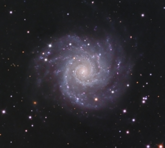 M74  from BMV Observatories