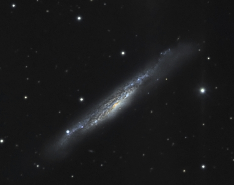 NGC 3079  from BMV Observatories