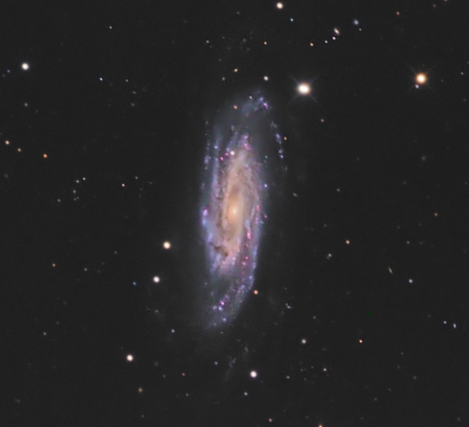NGC 3198 from BMV Observatories