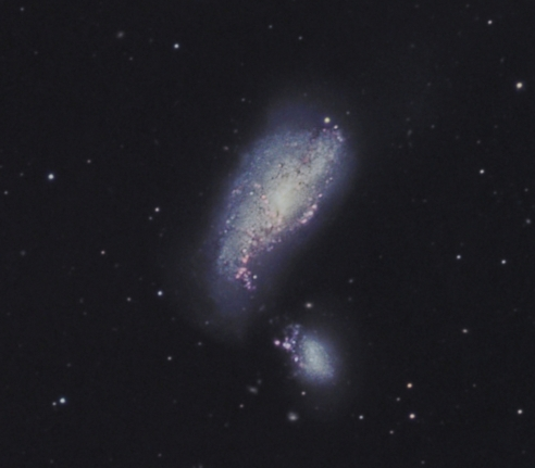 NGC 4490   from BMV Observatories
