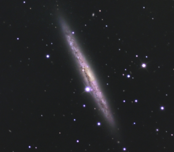NGC 4517  from BMV Observatories